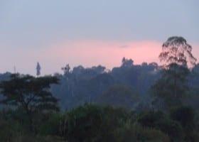 Gallery Uganda (34)