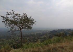 Gallery Uganda (93)